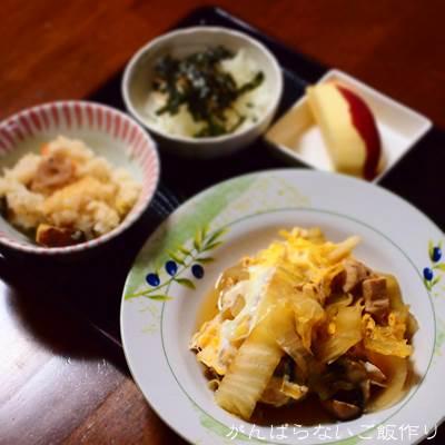 白菜と鶏肉の卵とじの献立