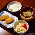 【きりたんぽ汁】簡単料理と献立
