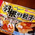【日本ハム 羽根付き餃子】食べた感想と献立