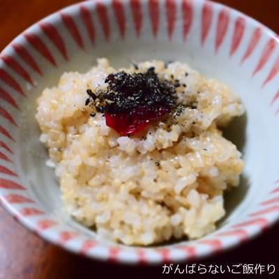玄米ご飯 梅干し すりゴマのせ