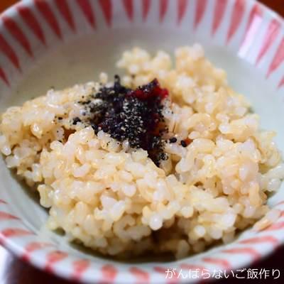 炊飯器で炊いた玄米ごはん